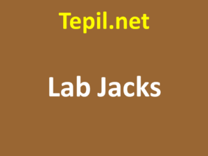 Lab Jacks - ג'ק מעבדה