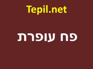פח עופרת | שיווק פח עופרת בישראל