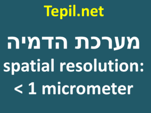 spatial resolution: < 1 micrometer