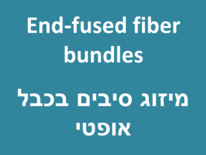 End-fused fiber bundles